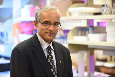 Harikrishna Nakshatri, PhD