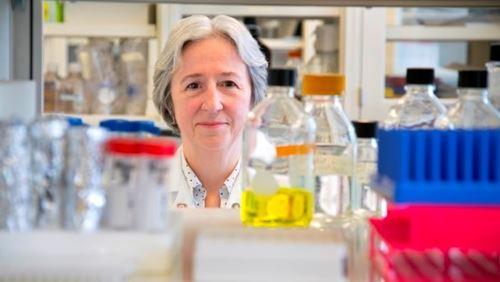 Lynda Bonewald in the lab