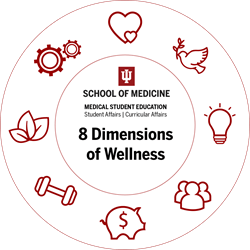 Wellness Wheel With Icons Final 1024×1024