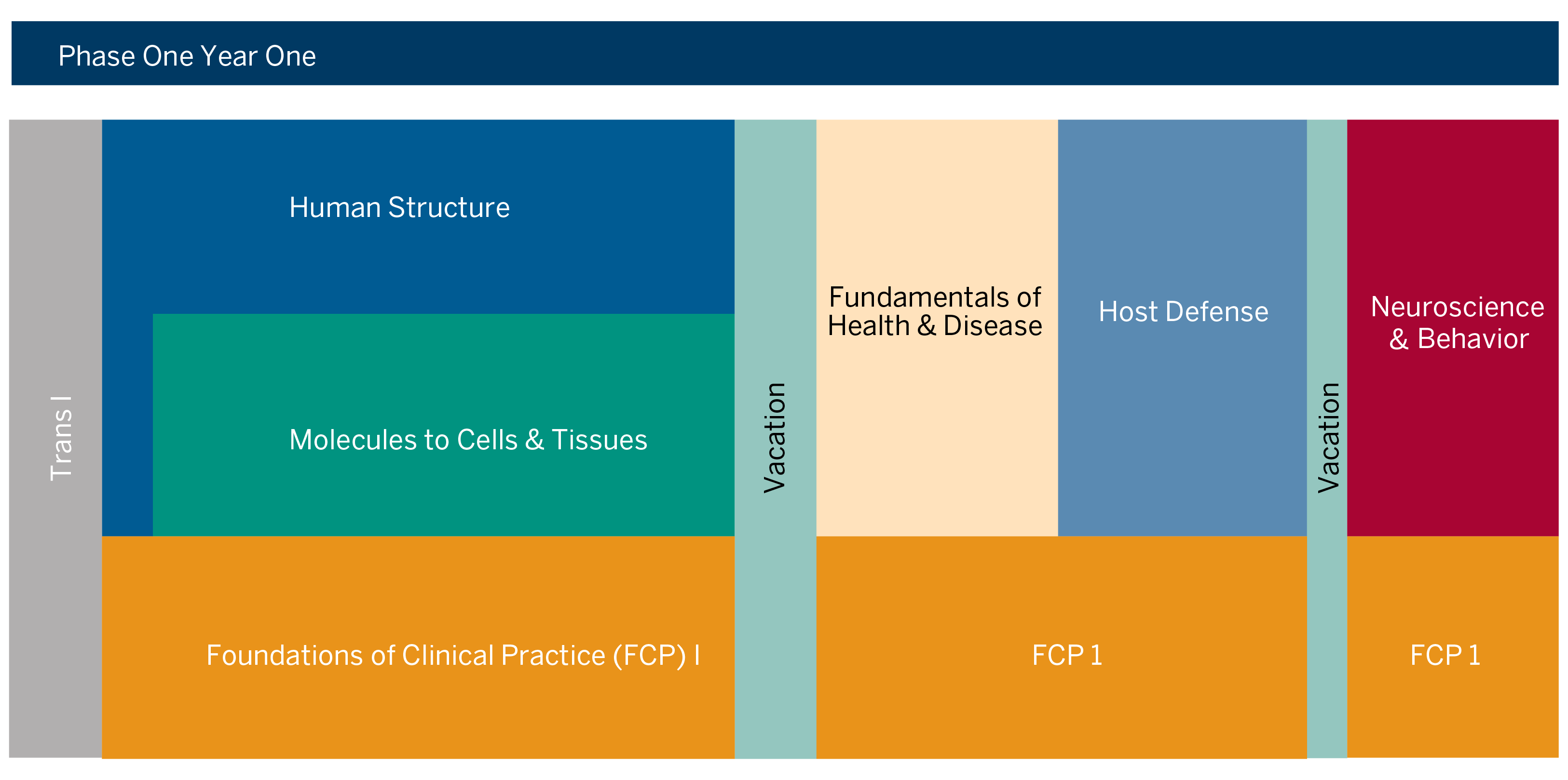 MD Curriculum Phase 1 - Year 1