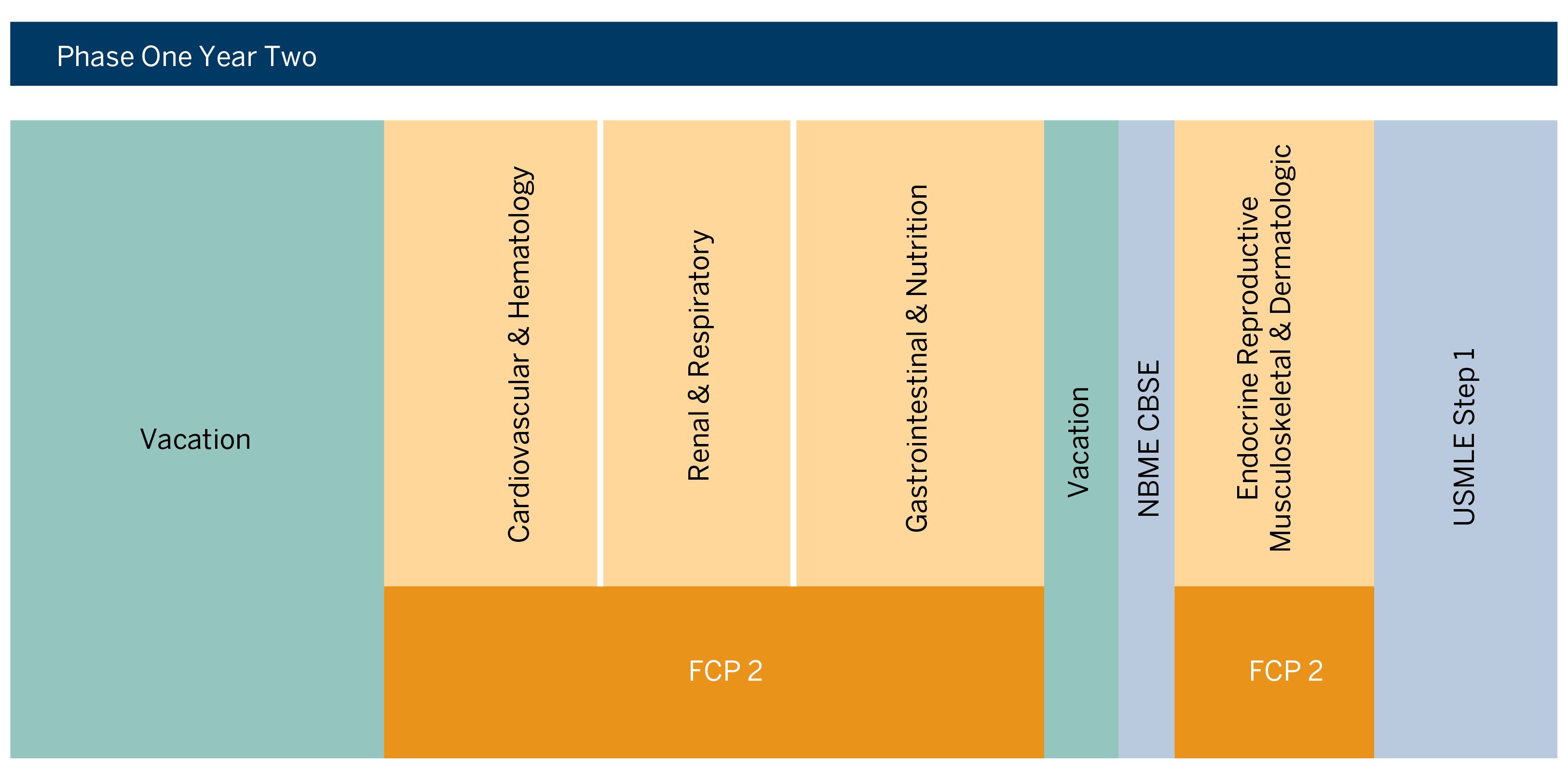 MD Curriculum Phase 1 - Year 2