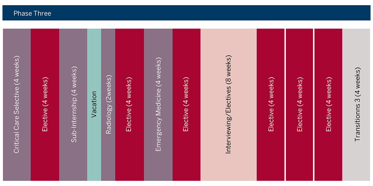 MD Curriculum Phase 3