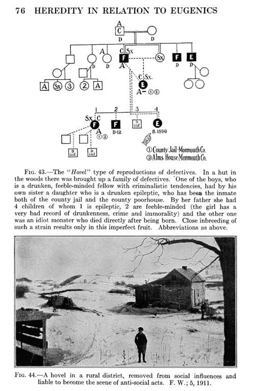 """Figure of a pedigree chart for a family of """"defectives"""" and photo of a rural district where this family possibly lived."""